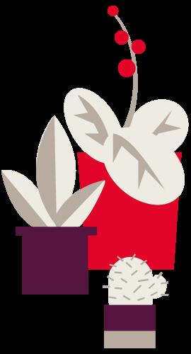 Tenant type icon